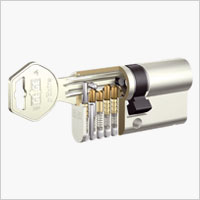 GEGE Profildoppelzylinderdarstellung pExtra
